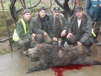 Lov na divlju svinju u Sekciji Jasika