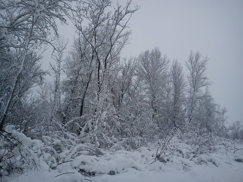 Lovište pod sNegom